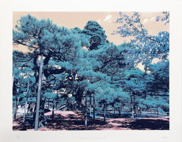 Japanese Landscape 1 by Trevor Abbott at
