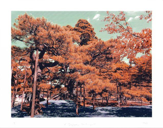 Japanese Landscape 3 by Trevor Abbott at