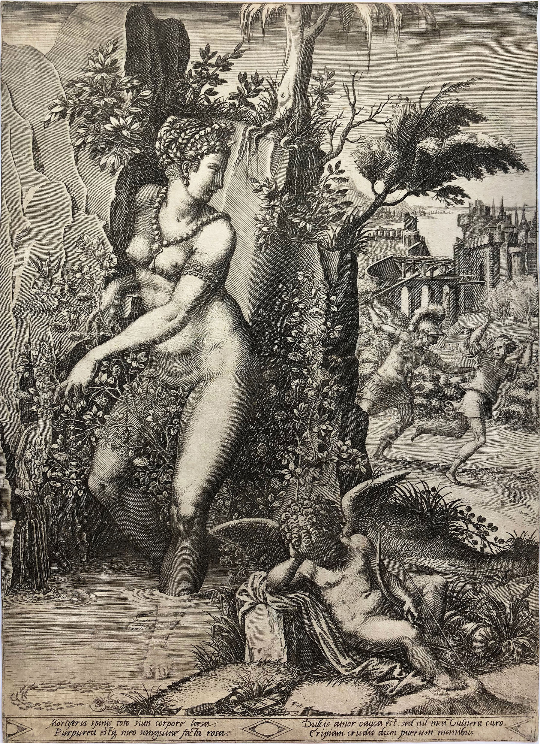 Venus and the Rose (2nd State) by Giorgio Ghisi