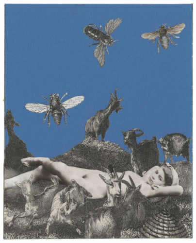 The Afternoon Buzzes by Peter Blake