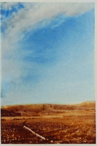 Landscape I by Gerhard Richter