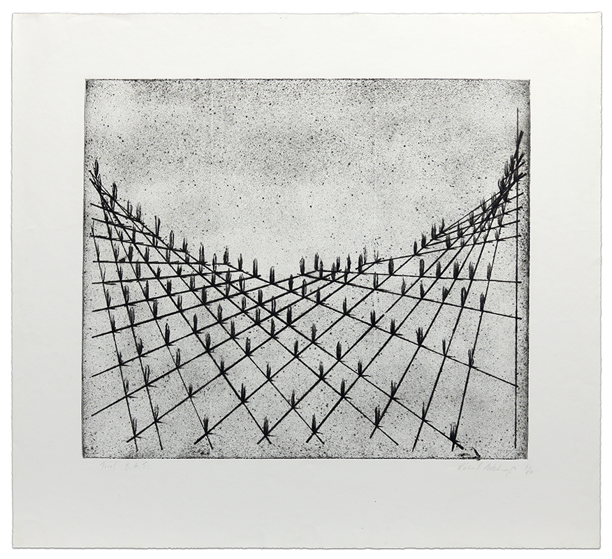 Cactus Scape No. 1 by Richard Artschwager