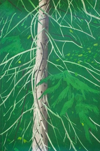 Spruce by Alex Katz at Gregg Shienbaum Fine Art
