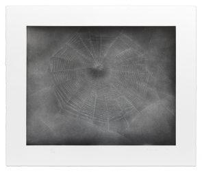 Untitled (Web 3) by Vija Celmins at