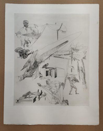 Cranes Mous et Harpe Cranienne by Salvador Dali at Fairhead Fine Art