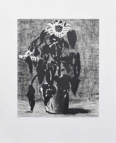 Sunflowers II by David Hockney at David Hockney