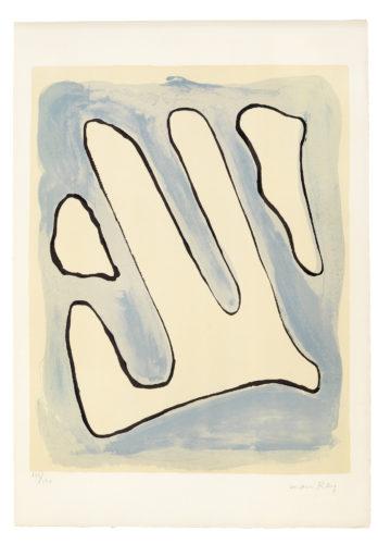 De l'Origine des especes par voie de selection irrationnelle (VIII) by Man Ray