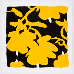 Lantern Flowers, Yellow And Black by Donald Sultan at Maune Contemporary