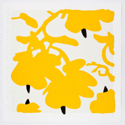 Lantern Flowers, Yellow And White by Donald Sultan at Maune Contemporary