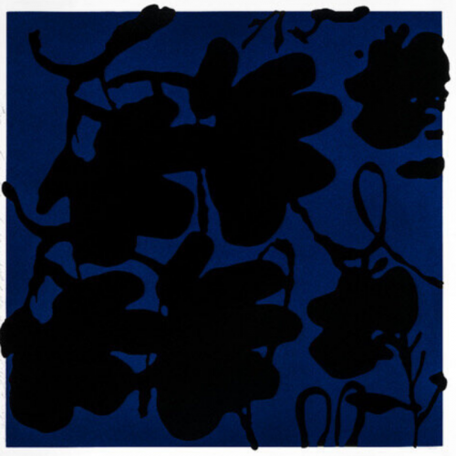 Lantern Flowers, Black And Blue by Donald Sultan