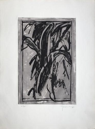 Planta de Interior by Joan Hernandez Pijuan at