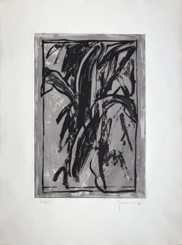 Planta de Interior by Joan Hernandez Pijuan