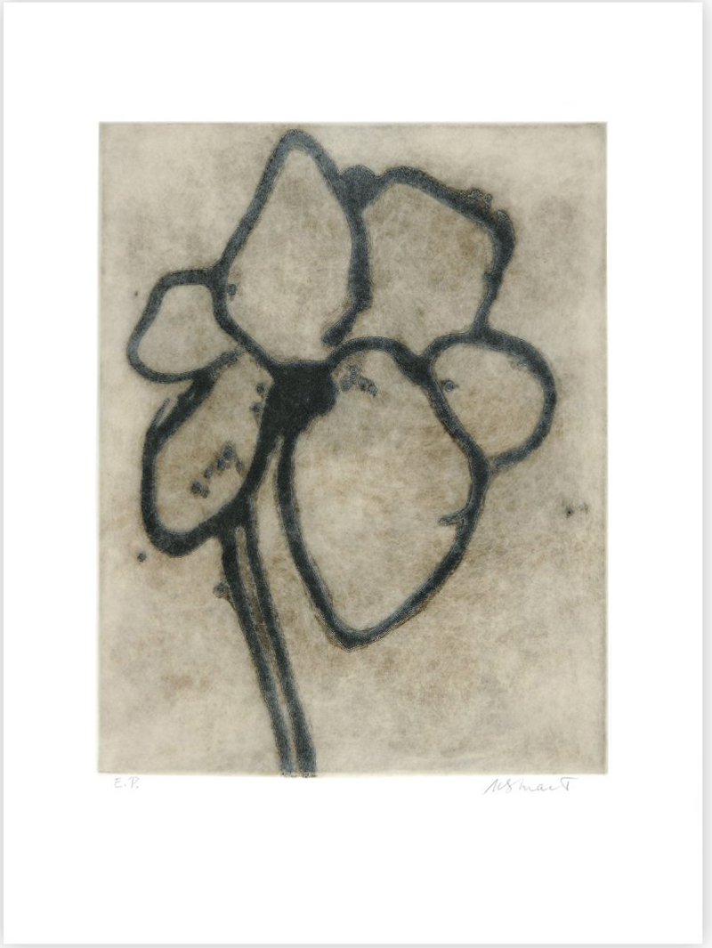 Gardenia by Michelle Stuart