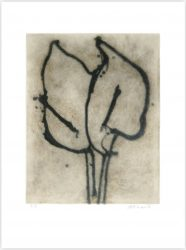 Two Lilies by Michelle Stuart at InvesArt Gallery