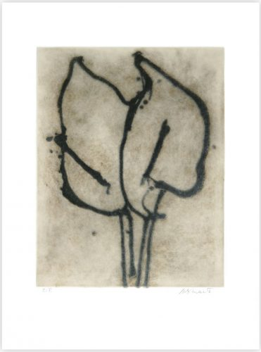 Two Lilies by Michelle Stuart at