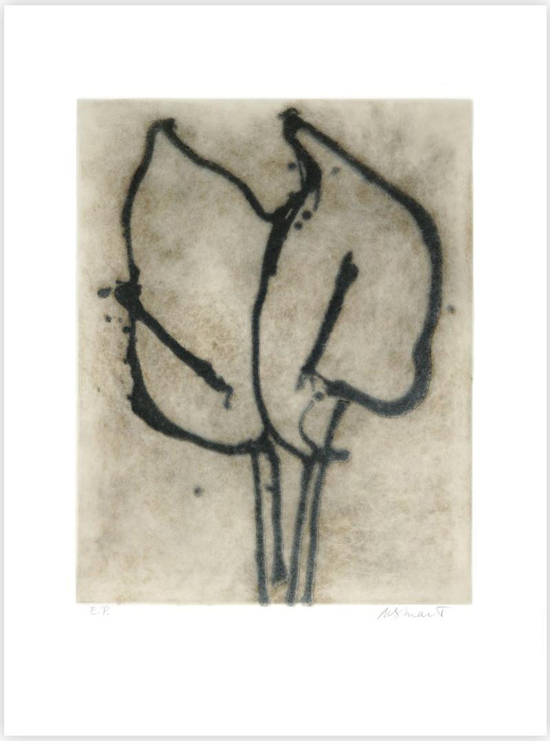 Two Lilies by Michelle Stuart