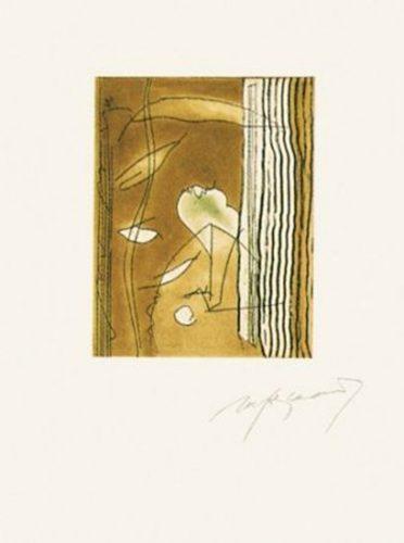 Finestres-2 by Albert Rafols-Casamada at