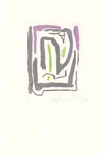 Laberint-1 by Albert Rafols-Casamada at