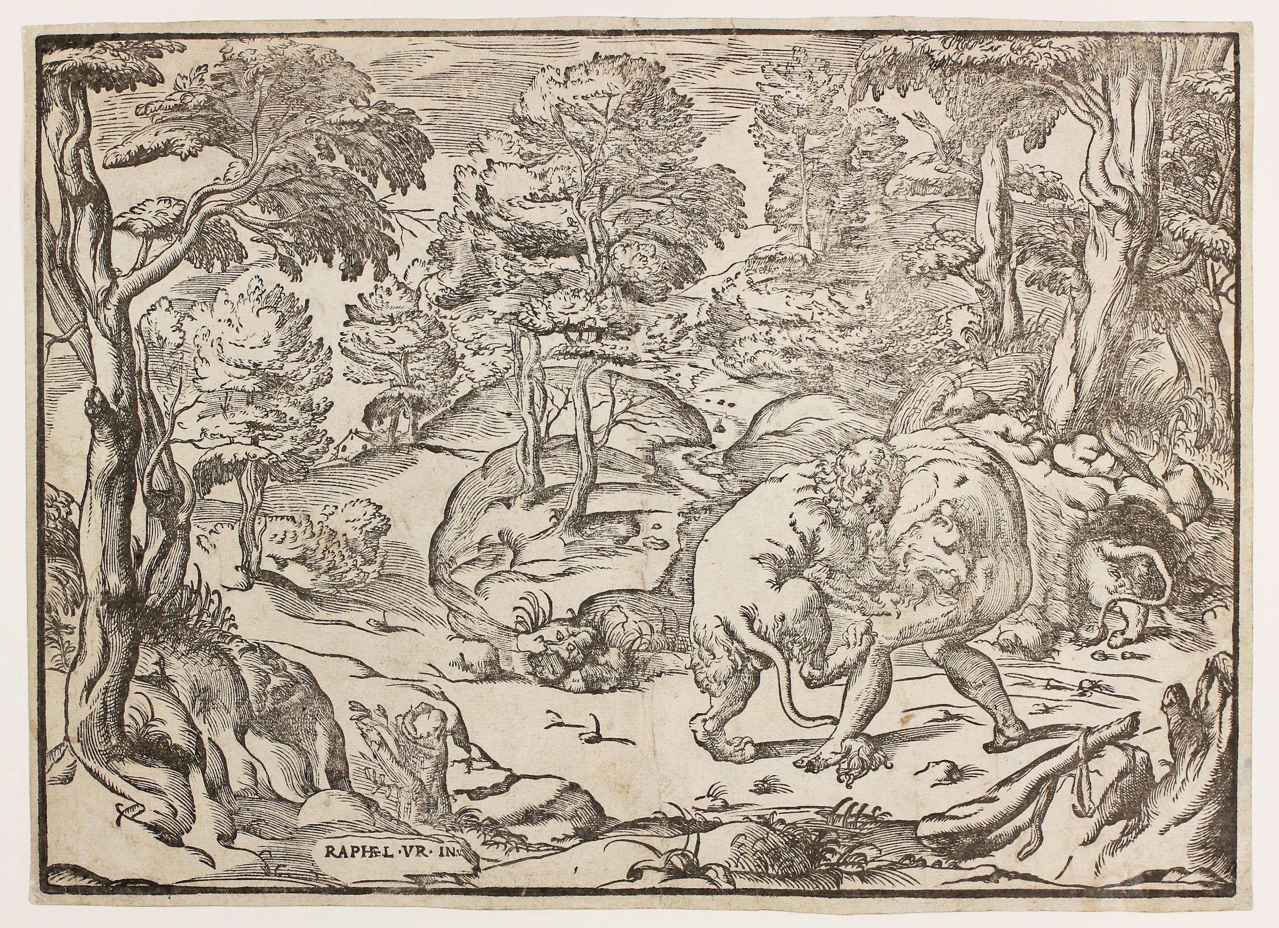 Hercules and the Nemean Lion by Niccolò Boldrini