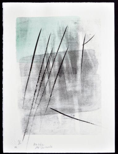 An Ode by Toko Shinoda at Hanga Ten - Contemporary Japanese Prints