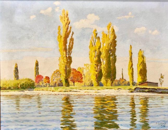 Pappeln am Seeufer by Plinio Colombi