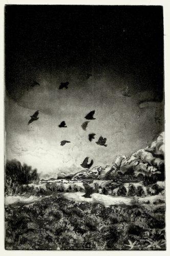 Ensaio by Julia Goeldi at