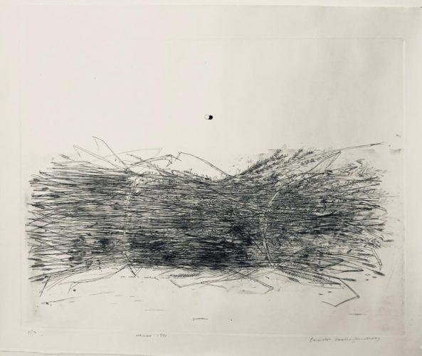 Untitled (Ramo/Branch) by Evandro Carlos Jardim