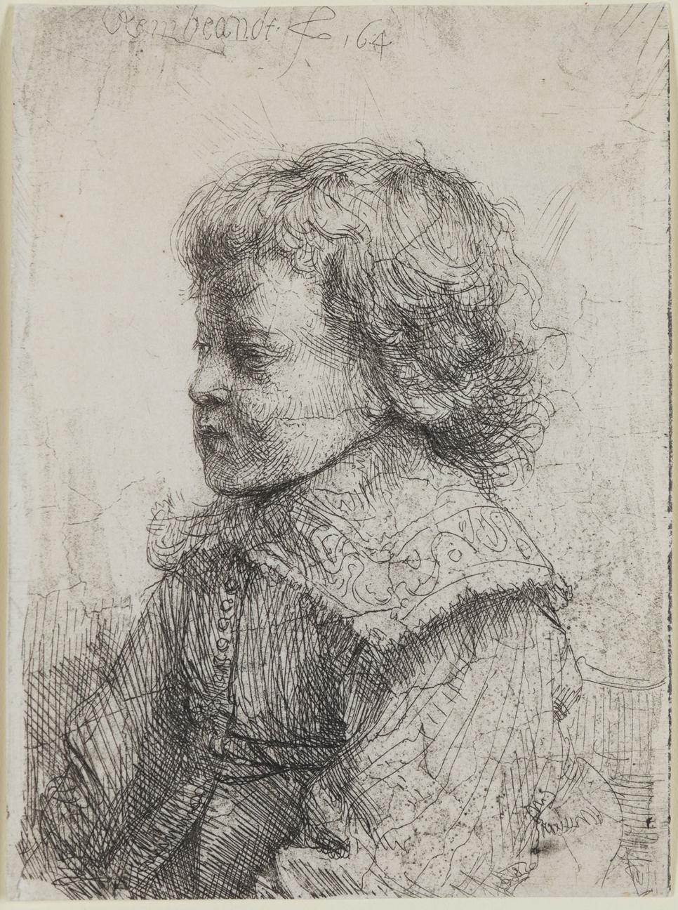 Portrait of a Boy in Profile by Harmensz van Rijn Rembrandt