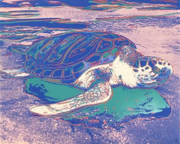 Turtle II.360A by Andy Warhol