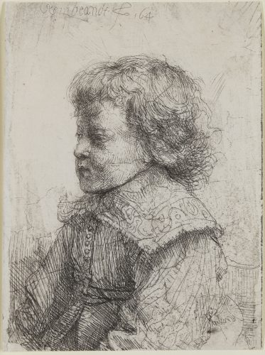 Portrait of a Boy in Profile by Harmensz van Rijn Rembrandt