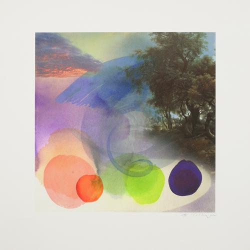 Zephyr – Hambleton by William Tillyer