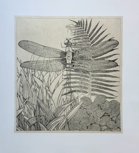 untitled (Dragonfly) by George Whitman at