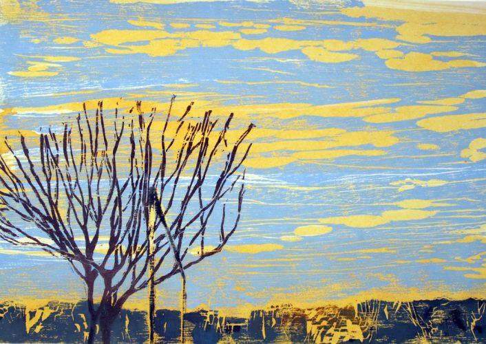 Serie Sobrevoo(Overflight Series) by Ana Calzavara at Galeria Gravura Brasileira