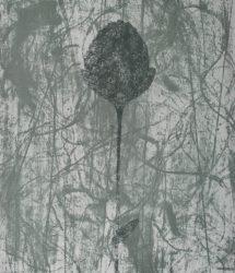 Black Peony by Prunella Clough at Gwen Hughes Fine Art