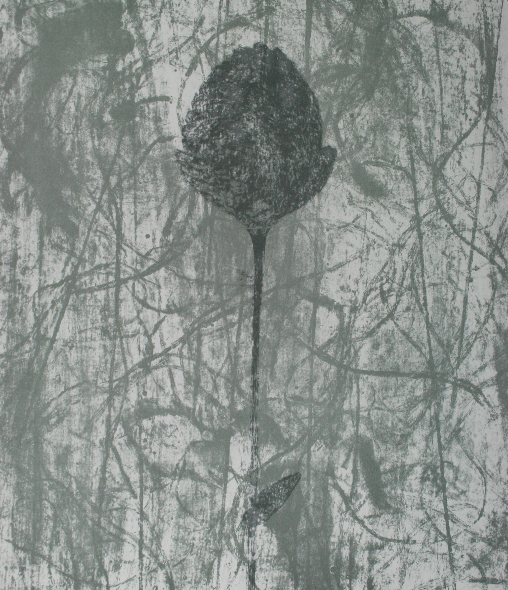 Black Peony by Prunella Clough