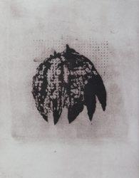 Creeper by Prunella Clough at Gwen Hughes Fine Art