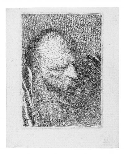 Head of a man with a very long beard facing right. by Giovanni Domenico Tiepolo