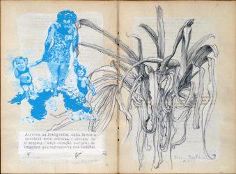 Vernacular Series – Open Book by Teresa Berlinck at Galeria Gravura Brasileira