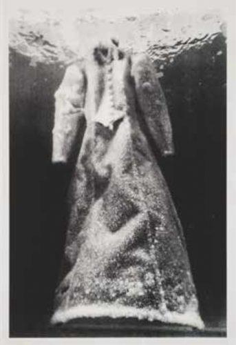 Salt Crystal Bride VIII by Sigalit Landau