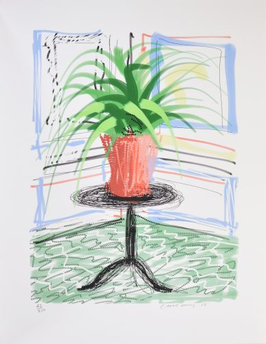 A Bigger Book, Art Edition C by David Hockney at