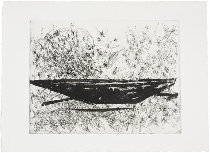Na vagação, no rio, no ermo (Roam, river, desert) by Paulo Camillo Penna