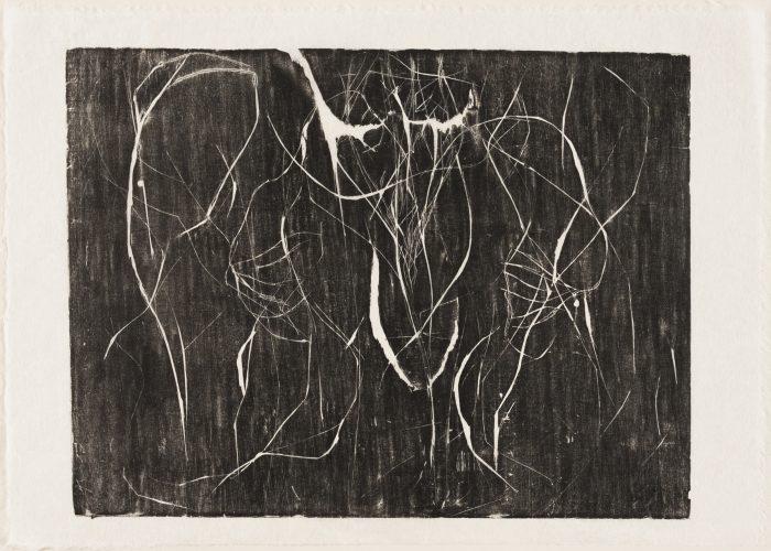 Embrionaria (Germinal) by Paulo Camillo Penna