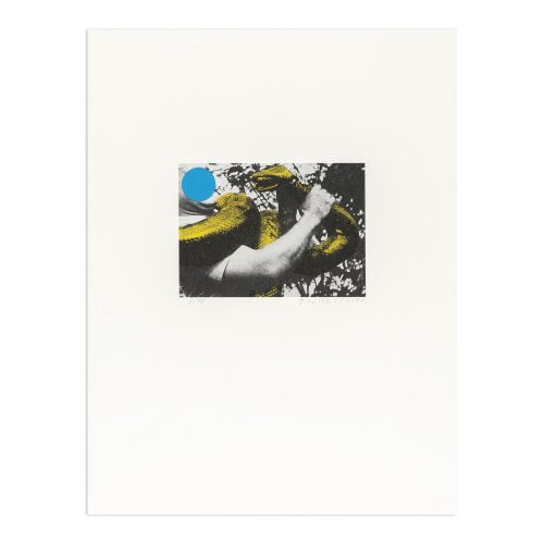 Man with Snake (Blue and Yellow) by John Baldessari
