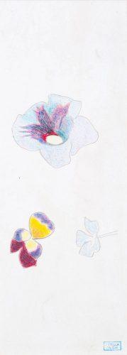 Flowers by Joseph Stella at