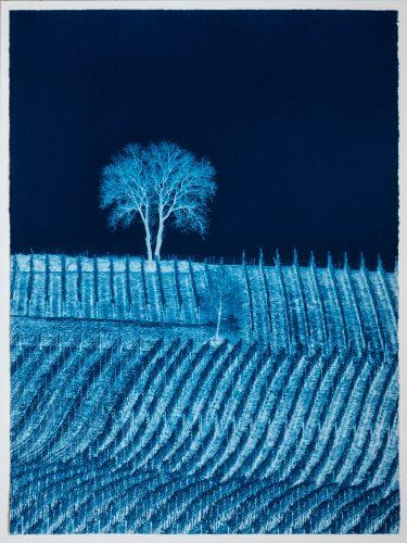 Portrait d'Arbre, Prussian Blue Study No. 2 by Gilles Lorin