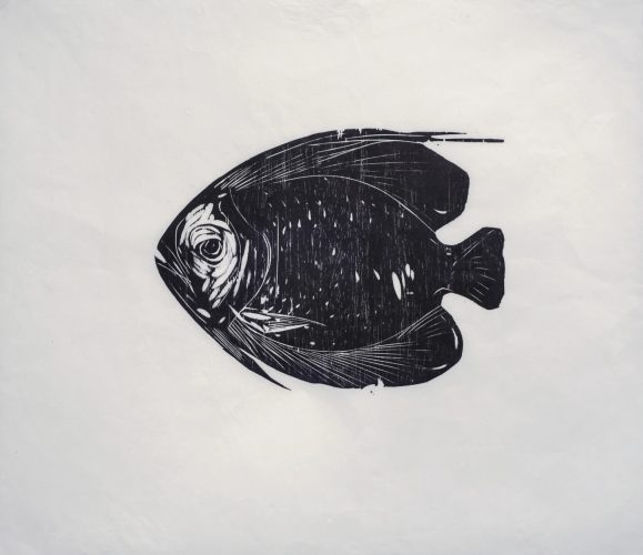 Untitled (Fish) by Ulysses Boscolo at