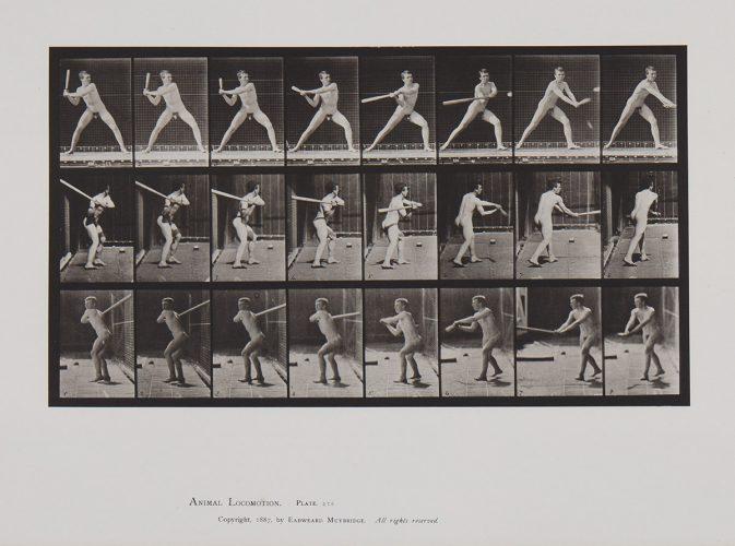 Animal Locomotion, Plate 276 by Eadweard Muybridge at